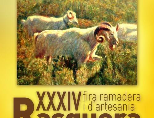 XXXIV FIRA ARTESANA I RAMADERA DE RASQUERA